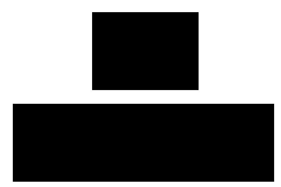 dessin palmette horizontale